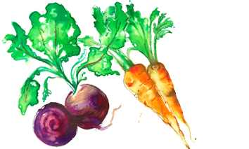 Fruit & Veg_Watercolour.png