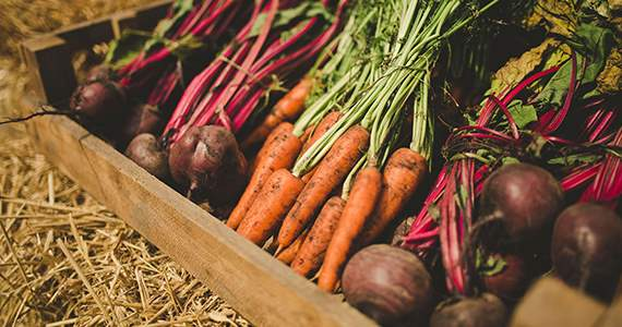 Homepage Main Slide_Vegetables.jpg