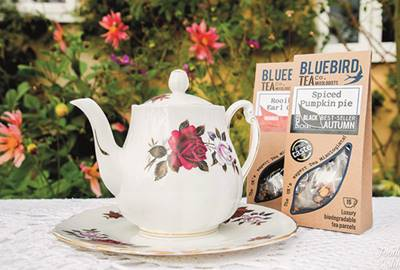 Tittle Tattle_Bluebird Tea_1st.jpg